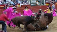 西班牙斗牛单挑战马