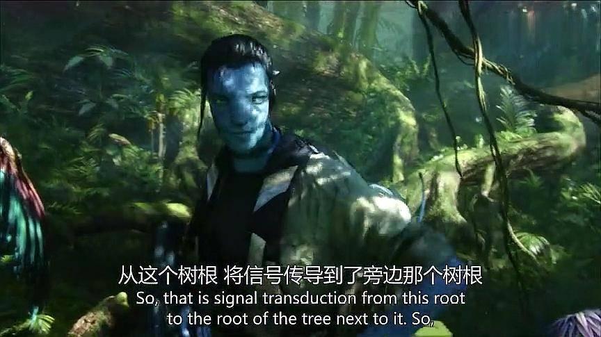 阿凡达:这才是真正的科幻大片,这特效让你身临其境,看着太爽!