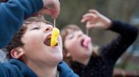 吃糖也会导致近视?