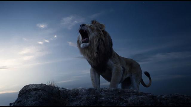 """画风过于真实!新版《狮子王》能否""""回忆杀""""?"""
