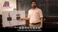 一本正经的胡说八道!印度的性教育课