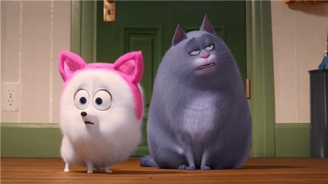 【爱宠大机密2】博美犬被训练成优雅猫咪