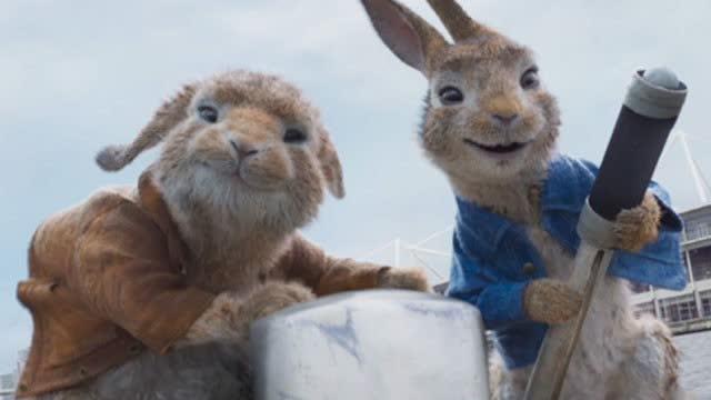 【比得兔2:逃跑计划】端午档唯一票房持续上扬影片