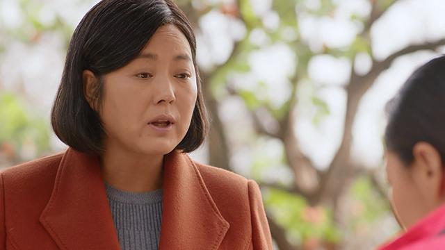 【岁岁年年柿柿红】第38集预告-杨柿红努力撮合女儿和孟事成