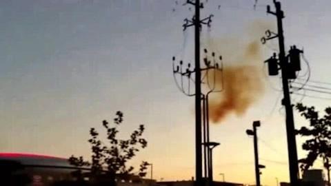 迁徙的鸟儿停留在电线上,起飞时竟然发生了意外,镜头记录全过程