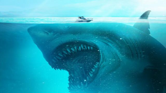 """【鲨海逃生】""""猛鲨来袭""""版预告"""