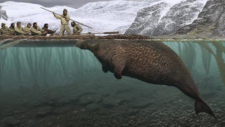 最奇葩的生物灭绝原因,被人吃灭绝的!