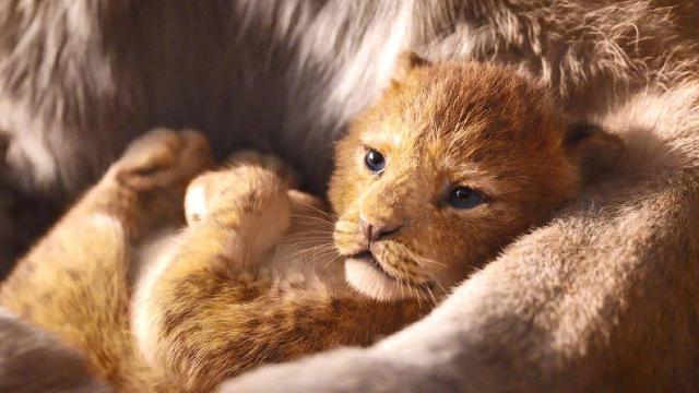 《狮子王》北美预售创纪录,是否也能在内地火爆呢