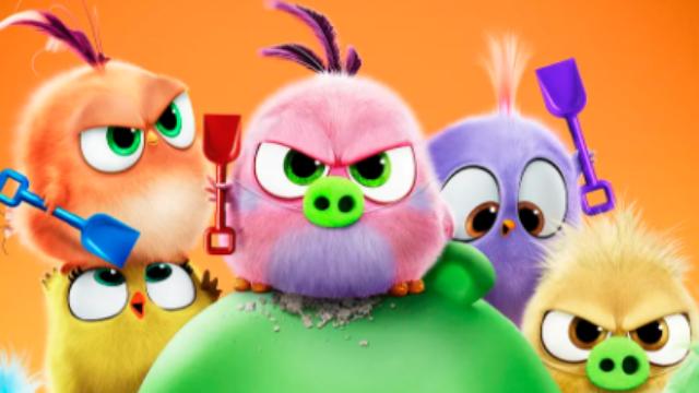 【愤怒的小鸟2】猪鸟大作战