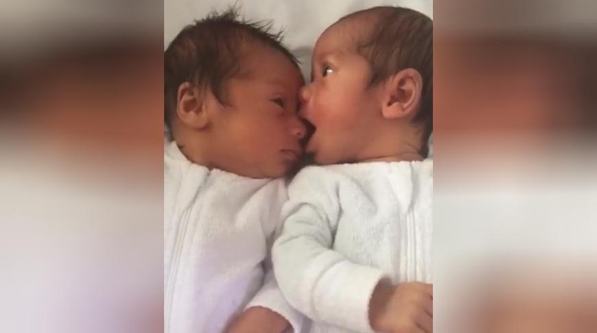 面对面躺着的双胞胎宝宝,哥哥张嘴想吃弟弟的鼻子,真有爱