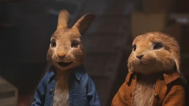 【比得兔2:逃跑计划】口碑炸裂领跑端午档 亲子关系探讨引共鸣